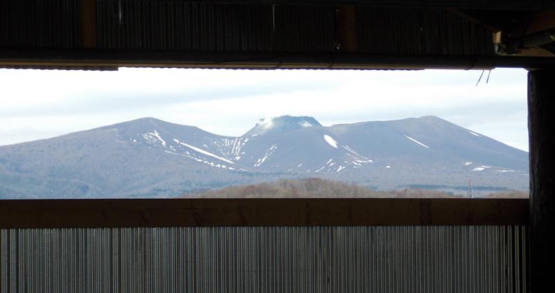 今日の樽前山