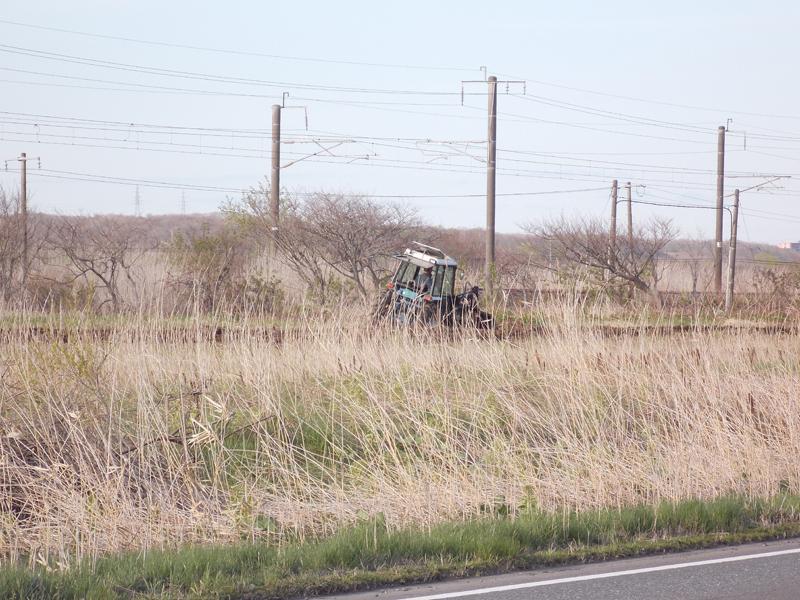 苫小牧方面から走ってきて、「おー鍋ちゃんが耕してるー!」と撮った写真。